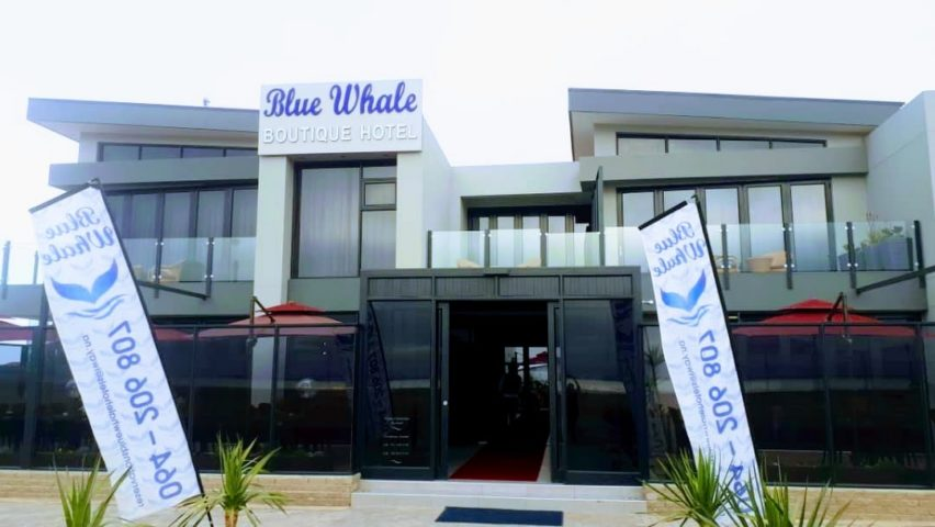 blue whale boutique hotel