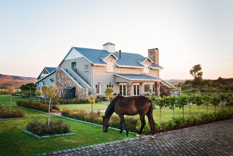 dunkeld country & equestrian estate